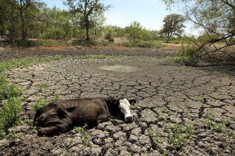 Climate Change Water Shortage Threatens US and Mediterranean Countries | Global Population | Scoop.it
