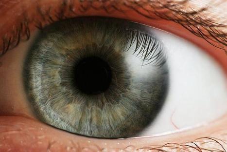 Antioxidantes para cuidar la salud ocular - El Eco de Sunchales | Degeneración Macular | Scoop.it