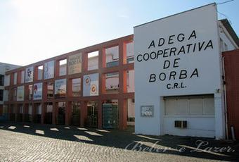 Comer, Beber e Lazer: Adegas Cooperativas: O que podemos esperar? | Wine Lovers | Scoop.it