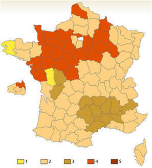 210 - French Kissing Map   Strange Maps   Big Think   FRENCH   Scoop.it