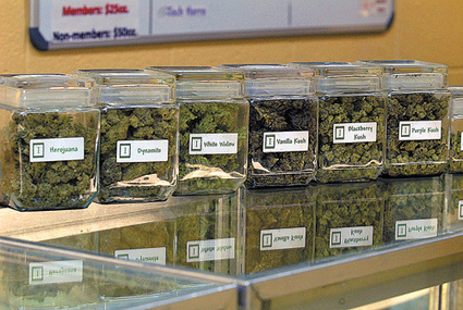 Is there really a difference between indicas, sativas and strains? - Colorado Springs Independent | Dispensary | Scoop.it