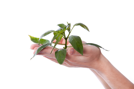5 Ways To Grow Your Business As Your Clients Grow Theirs | being italian in london | Scoop.it