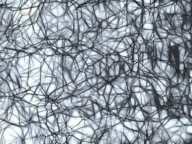 Mitos sobre el ictus cerebral, la cuarta causa de muerte | Era del conocimiento | Scoop.it
