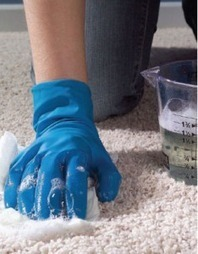 Carpet Cleaning Strategies For Everyone To Learn | My Small ... | Joseph Feels Great In His Carpet | Scoop.it