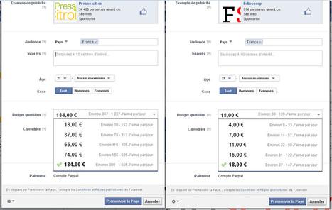 Acheter de la pub sur Facebook : ma petite expérience (suite et fin) | Actua web marketing | Scoop.it