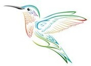 Glass Hummingbird Feeders. Powered by RebelMouse | Home And Family | Scoop.it