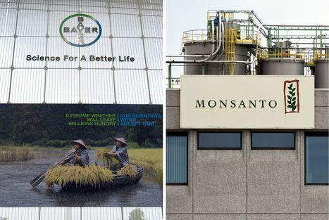 Bayer relève son offre sur l'américain Monsanto - Le Figaro | Fruits & légumes à l'international | Scoop.it