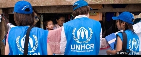 Quanto é trasparente #UNHCR? | Anti-Exploitation | Scoop.it