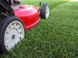 Regular Mower Maintenance And Lawn Cut Quality - Lawn Mower Repair and Parts - Honda, Toro and ECHO - Serving North Atlanta: Roswell, Alpharetta, Marietta   Lawn Mower Repair   Scoop.it