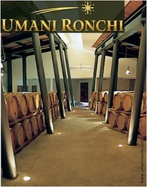 Le Marche Wine: Umani Ronchi - Producer Profile | Wines and People | Scoop.it