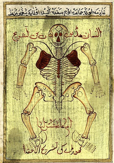 anatomical maps - eastern development in the middle ages | health & medicine in philosophy & culture | Scoop.it