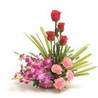 Send Flowers to Bareilly | Online Flowers and Cake Delivery in Bareilly – PickSmiles | Flowers Delivery to India | Scoop.it