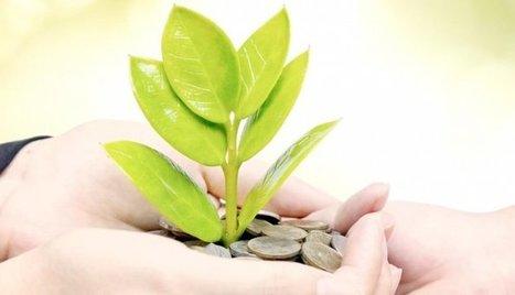 A quoi sert un Directeur développement durable ? | ECPM Strasbourg | Scoop.it