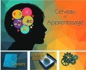 Cerveau et apprentissage | Ressources d'autoformation dans tous les domaines du savoir  : veille AddnB | Scoop.it