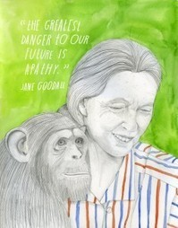Happy 80th Birthday, Jane Goodall: The Beloved Primatologist on Science, Religion, and Our Human Responsibilities | Joyful leadership | Scoop.it