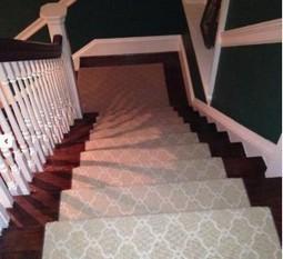 Carpet vs wood stairs   dog breeds   Scoop.it