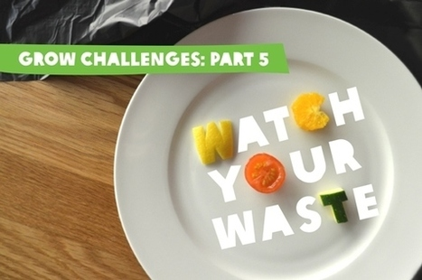 GROW Challenge #5: Watch your Waste | Humanities Teaching | Scoop.it