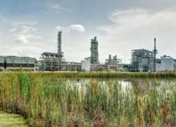 Ineos Bio – First Cellulosic Ethanol Plant in U.S.   Southeastern BioEnergy   Scoop.it