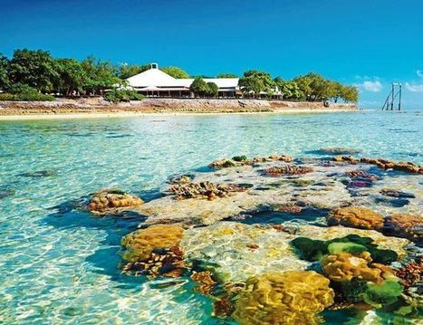 Heron Island: DIY-lovers' island dream - and it's for sale - Gladstone Observer | Agnes Water Adventures through time | Scoop.it