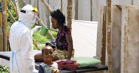 Ebola : la piste d'un médicament japonais   EBOLA   Scoop.it