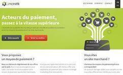 NEWFUND accompagne le déploiement du spécialiste du paiement en ligne Limonetik | Levées de fonds | Scoop.it