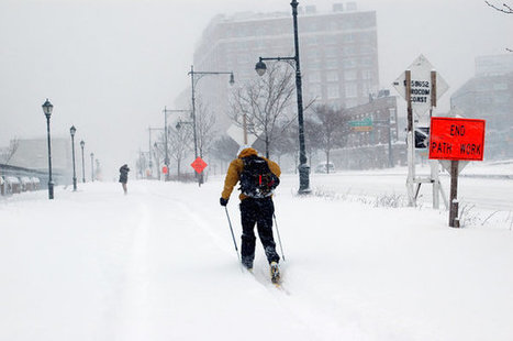 New York Braces for Blizzard Amid Warnings of Closings and Hazards   Weather And Disasters   Scoop.it