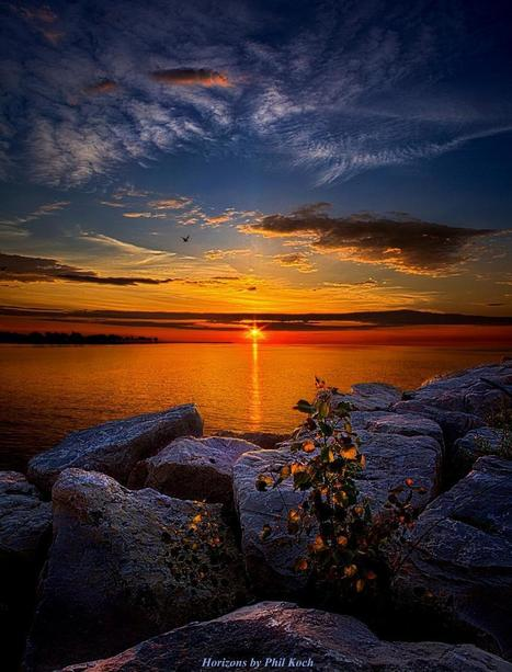 &quot;Before You Woke&quot;<br/>Wisconsin Horizons By Phil Koch.<br/>http://phil-koch.artistwebsites.com   Beautiful Photography   Scoop.it