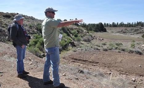 Restoring the Rio - Arizona Daily Sun | Fish Habitat | Scoop.it