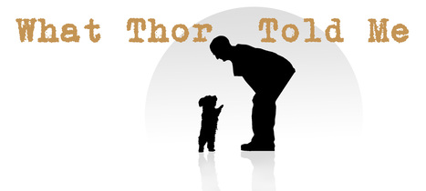 Political Satire, Musings, and Artwork | Political Humor Blog | WhatThorToldMe.com | What Thor Told Me | Scoop.it