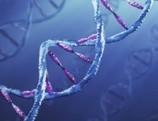 Documentan más de 4.000 mutaciones genéticas causantes de cáncer | Herencia y genética | Scoop.it