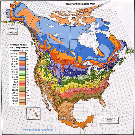 usa_climate_zones_map.jpg (595x594 pixels)   Special Purpose Maps   Scoop.it