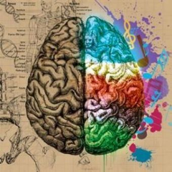 Nuestro cerebro está hecho para apreciar arte | Neurociencia y psicología | Scoop.it