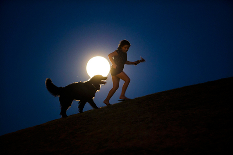 Supermoon photographs from around the world | The Blog's Revue by OlivierSC | Scoop.it