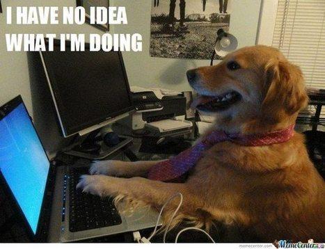 Un référenceur doit-il savoir coder ? | Metiers Internet | Scoop.it