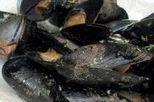 Evaluación de contaminantes en pescado y marisco | EROSKI CONSUMER | Inocuidad de alimentos | Scoop.it