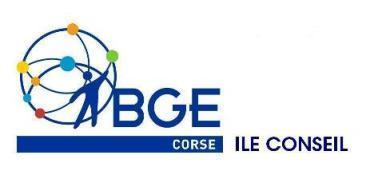BGE CORSE Ile conseil: La vision des Français sur l'auto-entreprise - Observatoire de l'auto-entrepreneur | Auto-entreprise | Scoop.it