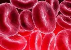 Iron Deficiency | nutrition | Scoop.it