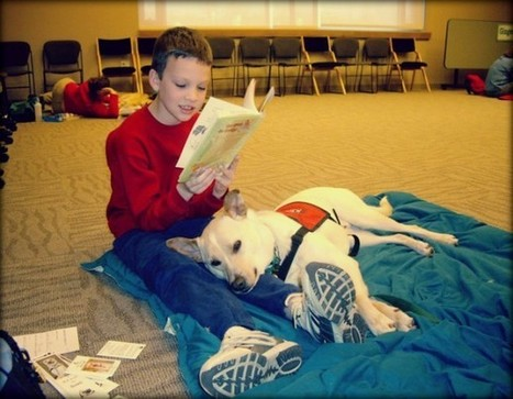 How Dogs In Germany Are Helping Children Learn To Read | Florida Dog Rescue | Scoop.it