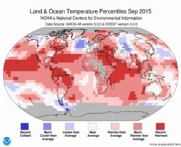 """Summary Information 