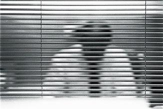 La soledad del emprendedor - Ignasi Vidal Diez | Emprendedurismo | Scoop.it