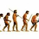 Evolucijska strana pojma Big Data   Moji članci   Scoop.it