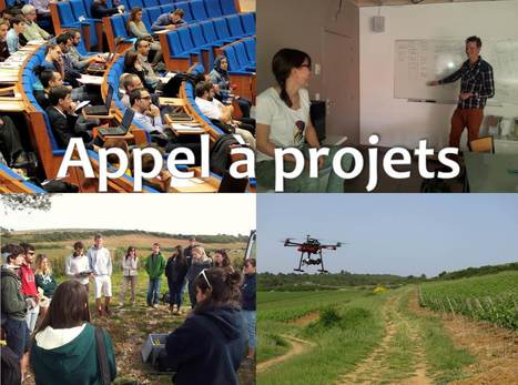 Appel à projets AgroTIC | Prizes, Calls and Grants in Economics | Scoop.it
