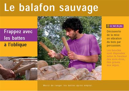 Balafon sauvage | DESARTSONNANTS - CRÉATION SONORE ET ENVIRONNEMENT - ENVIRONMENTAL SOUND ART - PAYSAGES ET ECOLOGIE SONORE | Scoop.it
