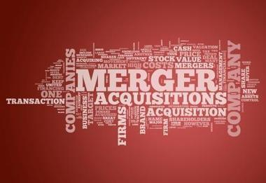 Why International Mergers and Acquisitions Fail | Intercultural Language Learning | Scoop.it