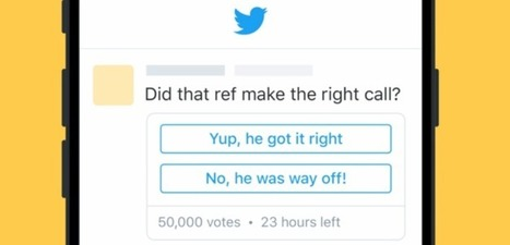 Twitter (Officially) Launches Polls | Character and character tools | Scoop.it