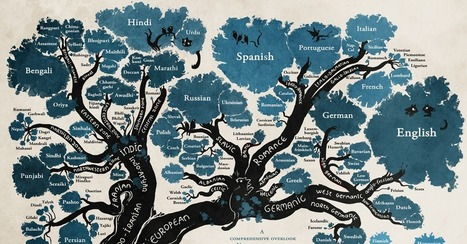The Tree of Languages Illustrated in a Big, Beautiful Infographic | internet et education populaire | Scoop.it