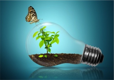 Big Data is the greenest data ofall | world of data | Scoop.it