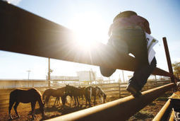 Yakama cowboys maintain wild horse race tradition - The Missoulian   Community Culture and Customs   Scoop.it