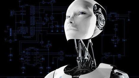 Le fichier robots.txt : Pourquoi ? Comment ? | SEO | IT-Connect | Pratiques Outils de veille et de recherche . Actualités Twitter,Google | Scoop.it