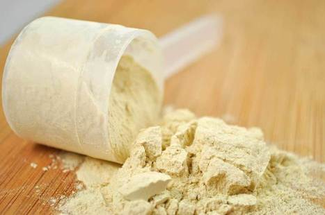 Whey Protein Hydrolysate Manufacturers India | Biological Products - Titan Biotech Ltd | Scoop.it